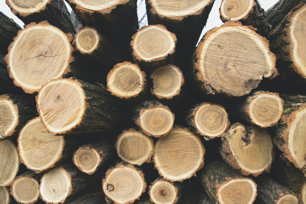 Why Should You Use The Timber In Building Construction?